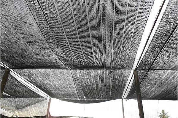 Lưới che nắng TPHCM